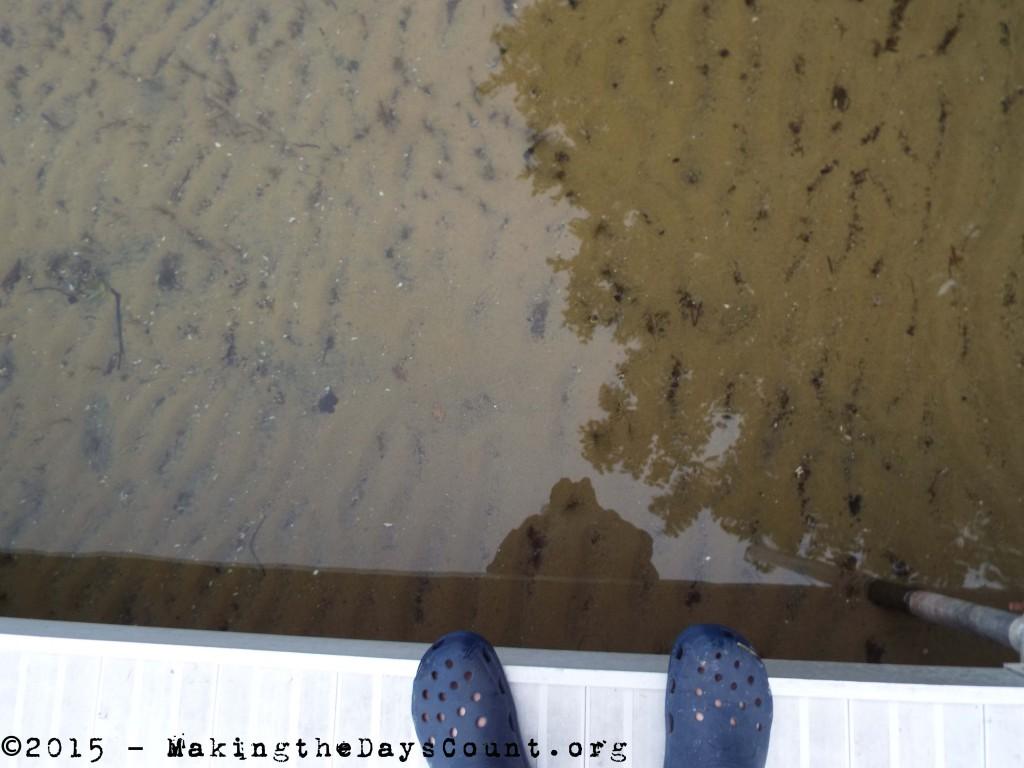 still waters beneath my feet.....