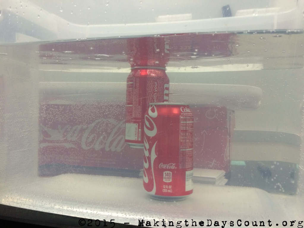 one Coca-Cola can floats, the other sinks, why?